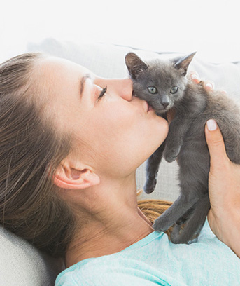 Adopting a cat is a wonderful and exciting experience, but there are important steps to take...