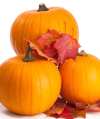 A celebrated symbol of the harvest season and Halloween, pumpkins can work just as well in your