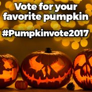 Pumpkin Vote 2017