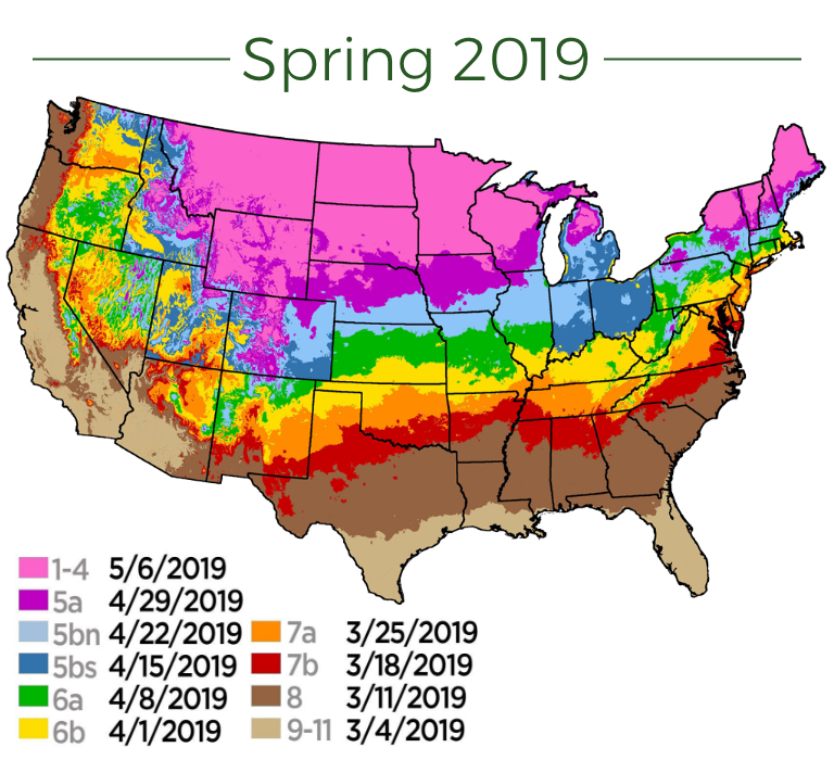 Spring 2019 Plant Map