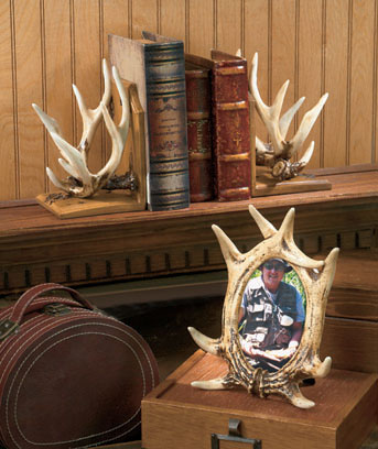 Woodland Antler Collection