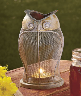 Rustic Owl Candle Lanterns
