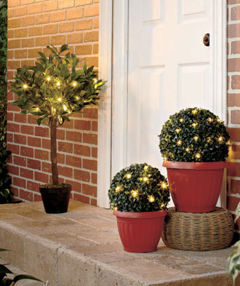 Lighted Potted Plants with Timer