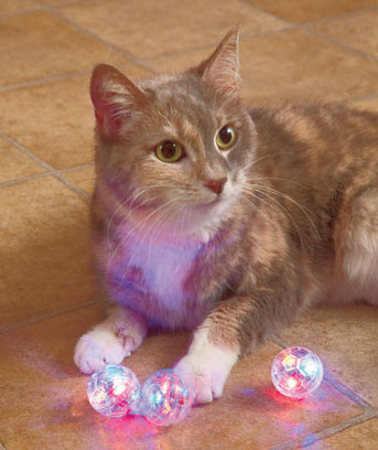 3-Pk. LED Motion-Activated Cat Balls™