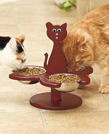 Raised Multi-Cat Feeder