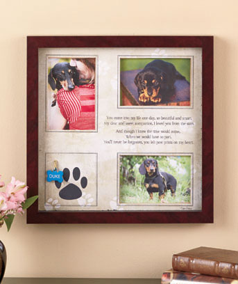 Pet Memorial Shadowbox Collage