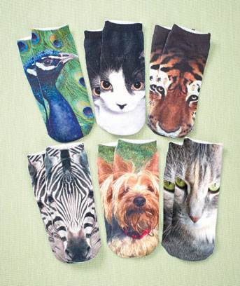 6-Pair Women's Photo Real Socks