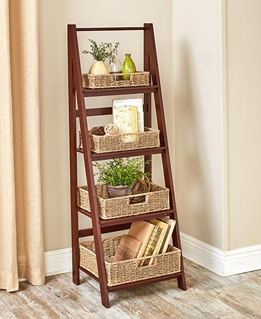 Ladder Shelf or Wire Baskets