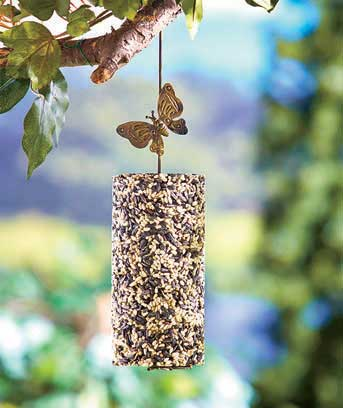Bird Seed Cylinders or Holder