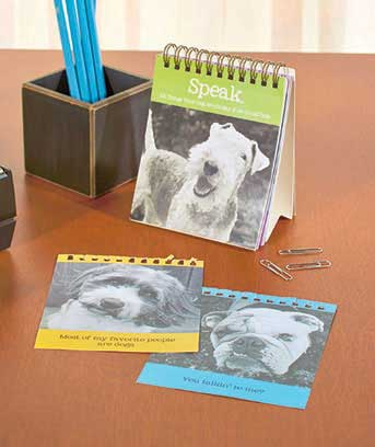 101 Things Your Pet Would Say Easel Books