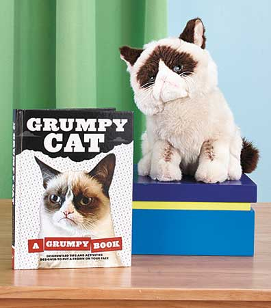 Grumpy Cat™ Book or Plush