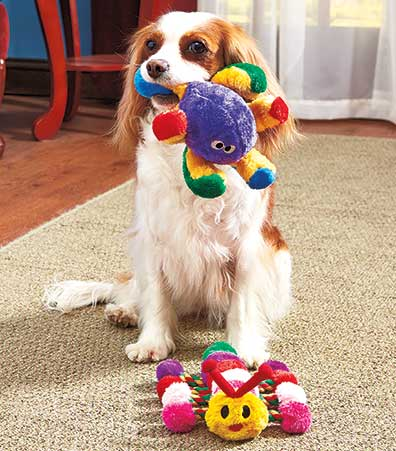 Set of 2 Colorful Multi-Feature Dog Toys