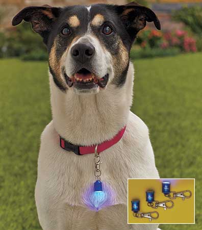 Sets of 3 Pet Blinkers