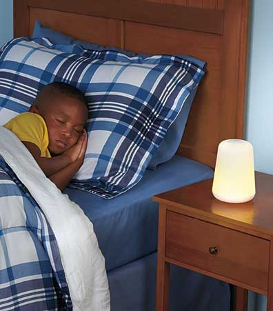 Night Light with Removable Flashlight