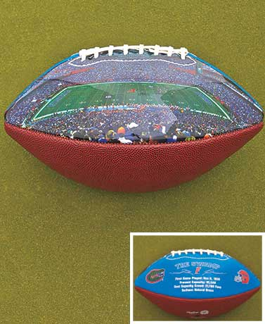 College Stadium Collectible Footballs