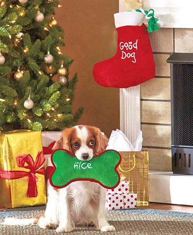 Good Dog Bad Dog Gift Collection