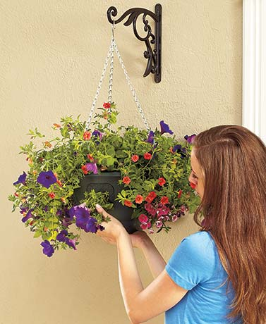 Hanging Baskets with Side Pop-Out Gates
