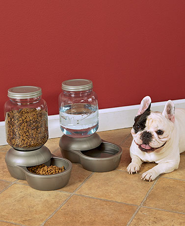 Petmate® Mason Jar Waterers or Feeders