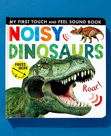 Touch and Feel Noisy Sound Books