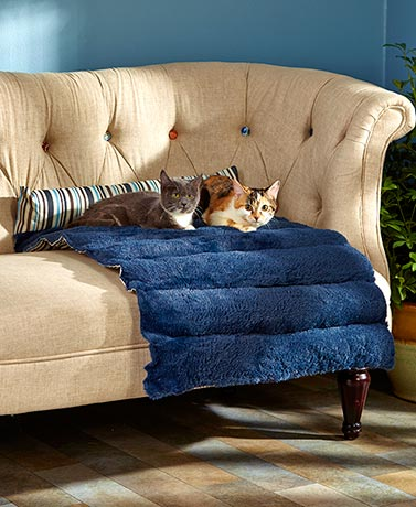 Roll-Up Padded Reversible Pet Beds