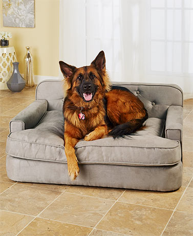 Luxury Pet Sofas
