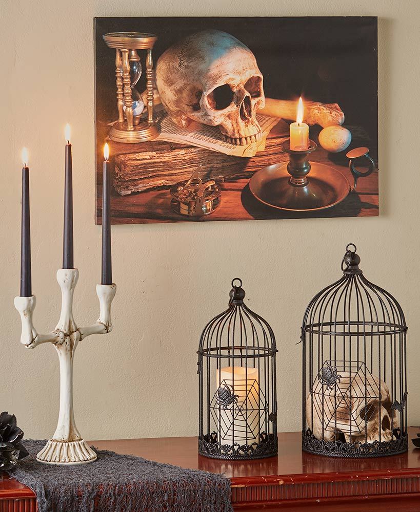 Cages And Bones Decor