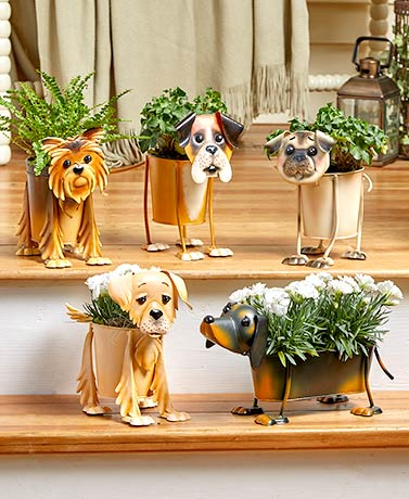 Adorable Dog Breed Planters