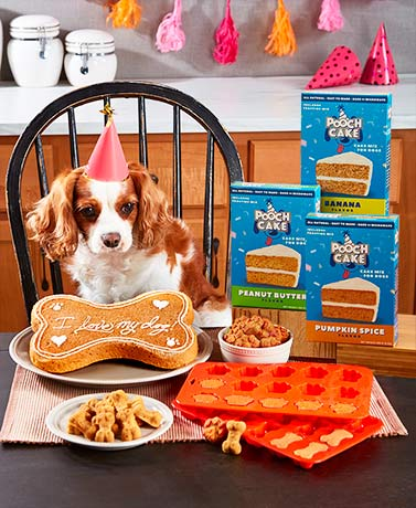 Bake at Home Pooch Cake Mix or Baking Molds