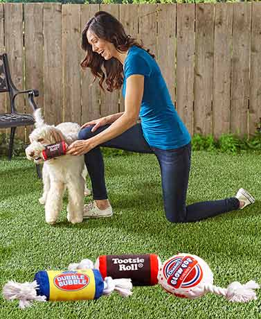 Licensed Candy Squeaky Dog Pull Toys