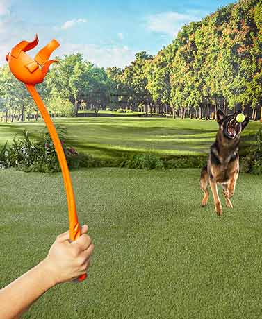 Throwbizz Interactive Ball Thrower Pet Toys
