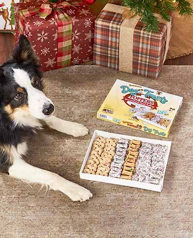 105-Pc. Gourmet Dog Treats