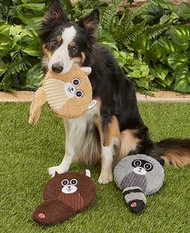 Flat Jax Wild Critter Squeaky Dog Toys