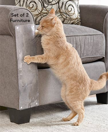 Furniture or Door Scratch Protectors