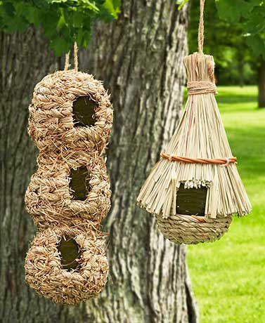 Birdhouse Condo or Nester