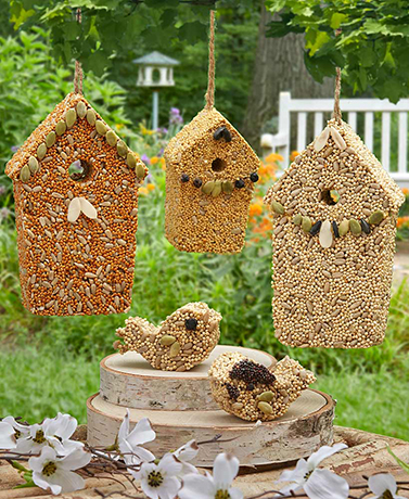 5-Pc. Home Tweet Home Birdseed Set