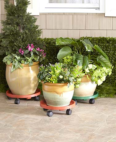 Rolling Potted Plant Movers