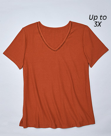 Short-Sleeved Swiss Dot V-Neck Tops